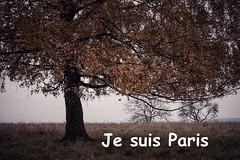 Je suis Paris (PHOTOPHOB) Tags: paris france lumix frankreich panasonic libert g6 liberte fraternit galit egalite fraternite solidarit jesuisfrance dmcg6 jesuisparis noussommesunis 13novembre2015