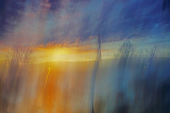 painted sunrise (krøllx) Tags: morning blue autumn trees light sun color art colors yellow norway sunrise painting season landscape dawn blurry glow seasons trondheim incandescent icm intentionalcameramovements 1511030093