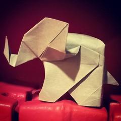 Elephant - Fumiaki Kawahata (Stefano Borroni (Stia)) Tags: origami elefante kawahata