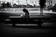 jbr_reading_woman (sonofphotography) Tags: world street city blue light sunset red sea portrait sky blackandwhite bw cloud sun white house snow streetart black blur flower macro art history beach nature water fleur beauty car night wonderful garden photography xt mono photo blackwhite amazing pretty fuji bright availablelight famous country great php daytimenighttime unlimitedphoto beautyphotoart portraitandlandscape