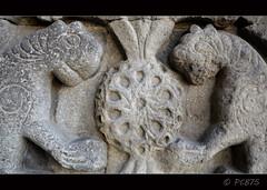 Roseta amb lleons (PCB75) Tags: museum turkey museu madrasah kali trkiye central muse trkei madrassa turquia turkish kurdistan 1310 anatolia erzurum kurdish seljuks yakutiye medresesi ilkhanids  theodosiopolis manzikert selycidas hocayakut kurdistanatirkiy bakurkurdistan teodosipolis seljcides trkislameserleriveetnografyamzesi