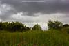 Tormenta en Valdepinar (Chema Fuentes Fdez) Tags: tormenta primavera amapola nubes verde paisaje monte valdepinar