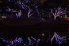 121016-24 (kara_muse) Tags: christmaslights vitruvianpark