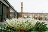 Frilly (Georgie_grrl) Tags: decorativecabbage ithink frilly ruffles leaves funky garden planter wychwoodartbarns stclairavenuewestarea toronto ontario pentaxk1000 rikenon12828mm smokestack