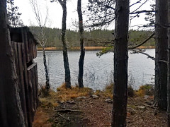 Uath Lochan by a hide, 2016 Dec 30 (Dunnock_D) Tags: uk unitedkingdom britain scotland highlands highland badenoch grey cloud cloudy sky heather woods woodland forest uathlochans uath lochan hide
