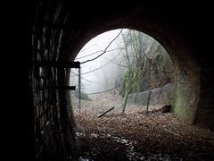 Mount Pleasant Tunnel (Jason_Hood) Tags: disused abandoned railway railroad fog frost tunnel railwaytunnel