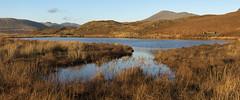 Low Birker Tarn (Nick Landells) Tags: lowbirkertarn tarn lake winter evening light golden scafell illgillhead yewbarrow pillar lakedistrict panorama