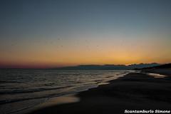 tramonti (§imo) Tags: sea mare tramonto spiaggia inverno europa italia calabria catanzaro sunset winter beach europe italy simonescantamburlo gabbiani seagulls relax solitudine felicità loneliness happy canon 70d 1855