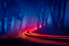Neon Forest (J C Mills Photography) Tags: sintra portugal forest night nightphotography nightscape sintracascaisnaturalpark lighttrails trees