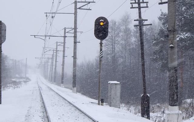 ВСамарской области 50-летний мужчина умер под колесами грузового поезда