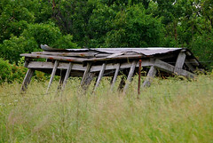 Falling Down (~ Lone Wadi ~) Tags: barn decrepit abandoned abandonment weeds overgrown farmcountry decaying bluegrassstate outdoors crittendencounty kentucky