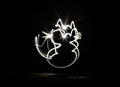 Pussy Cat lights (PDKImages) Tags: lights torch dark hearts love sparklers sparkle message fizz writing fizzy heart cat face bright daisy flower