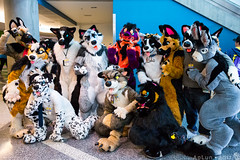 FC2017-324 (AoLun08) Tags: furtherconfusion furtherconfusion2017 fc2017 convention fursuit furry fursuiting