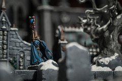 Week 9 - Artistic: Still Life (Demppa) Tags: warhammer fantasybattle fantasy figurine miniature strategy gamesworkshop tabletop game games wizard graveyard dogwood dogwood2017