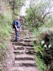 Peru-338 (mike_p_uk) Tags: mountain peru machu picchu book 2015 wayna