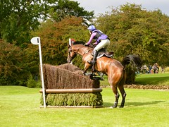 Burghley Horse Trials 2015 (sho5572) Tags: horse sport jumping nikon action lincolnshire crosscountry stamford xc equestrian trials equine d800 burghley horserider eventing burghleyhorsetrials lrbht thelandroverburghleyhorsetrials2015