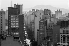 Avenida So Joo (William Molina Fotografia) Tags: street city cidade urban blackandwhite arquitetura architecture buildings landscape sopaulo sp urbano rua fotografia pretoebranco edifcio paulicia skypercity