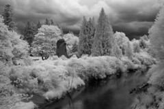 Tilting At Windmills (NW Vagabond) Tags: river ir redmond infrared marymoor sammamish 720nm