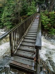 20151115-_1150477.jpg (IanRolo) Tags: bridge river y waterfalls betwsycoed betws coed snowdonia miners afon minersbridge llugwy afonllugwy riverllugwy