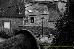 03112015_Vierves-sur-Viroin_04
