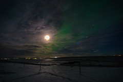 Iceland_2015-245 (agoldmutt) Tags: iceland reykjavik geyser ingvellir northernlights goldencircle gullfosswaterfall