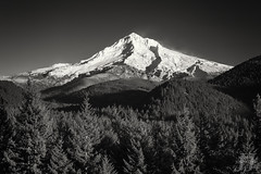Winter White Dress (Joshua Johnston Photography) Tags: blackandwhite oregon mthood pacificnorthwest pnw bnw mthoodnationalforest wyeast canon6d canon35mmf2is joshuajohnston