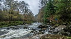 20151114-_1150467.jpg (IanRolo) Tags: river y betwsycoed betws coed snowdonia afon llugwy afonllugwy riverllugwy