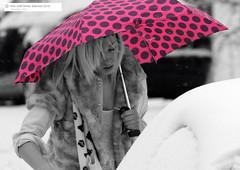 Pink Umbrella (Kaibakorg) Tags: winter snow umbrella nikon award d300 kaibakorg