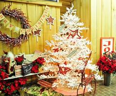The Most Wonderful Time of The Year (EDWW day_dae (esteemedhelga)) Tags: santa christmas xmas holiday snow stockings st bells festive reindeer snowflakes snowman globe poinsettia illuminations garland holly scrooge nicholas elf wreath evergreen ornaments angels tinsel icicle manger yule santaclaus mistletoe nutcracker cheer jolly christmastrees happyholidays bethlehem merrychristmas bauble rejoice goodwill partridge elves yuletide caroling holidayseason carolers seasongreetings merrifieldgardencenter edww christchild daydae esteemedhelga jesus hohoho gingerbread wrappingpaper giftgiving joyeuxnoel northpole holidaydecornativity sleighride artificialtree candycane feliznavidadfrostythesnowman kriskringle sleighbells stockingstuffer wisemen twelvedaysofchristmas winterwonderland
