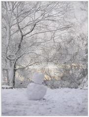 Fin de journe (melolou) Tags: winter white snow snowman hiver bonhommedeneige