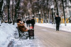 Tuesday time stop (allejandrine) Tags: street streetphotography boulevard winter people man old sit