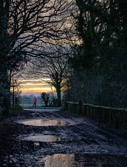 Dawn Walk- Penfurzen Lane (Ian Hayhurst) Tags: dawn pink jacket sunrise lane trees puddles ice winter hiver lone figure reflections penfurzen mud gate early bright water landscape clouds