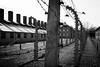 Auschwitz IMG_4602 black and white (Rossi Raslof) Tags: auschwitz kz death dead kill camp konzentrationslager vernichtung gas gaskammern mord holocaust shoa shoah
