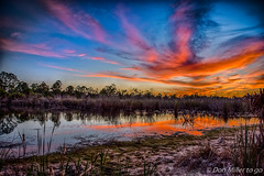 My Florida (DonMiller_ToGo) Tags: cloudsonfire cloudporn sunsetmadness hdrphotography nature water goldenhour lake florida hdr 3xp skypainter skycandy onawalk clouds sky sunsetsniper outdoors d810 reflection sunsets