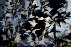 Storm soul (Lorelei Eyre) Tags: art fineart digitalart portait dream vision storm black monochromatic monochrome blue concept concettual surrealist surreal