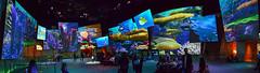 Inside Panoramic of the Art of Animation Building (Cakvala-SC) Tags: disney disneyland california adventure inside indoors panoramic dca nikon d600 hollywood themeparks colorful bright nikkor