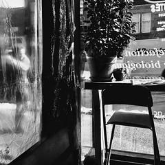 Regarder le monde qui passe... (woltarise) Tags: café rico torréfacteur montréal passante protection plastique froid montroyalest avenue plateau streetwise