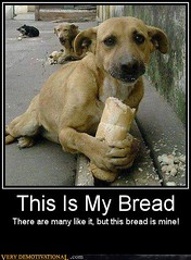 This is my bread... (Chikkenburger) Tags: posters memes demotivational cheezburger workharder memebase verydemotivational notsmarter chikkenburger