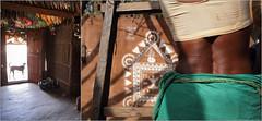 dog about, tekra (nevil zaveri (thank you for 10million+ views :)) Tags: door roof shadow people woman dog sunlight india house art home animals wall closeup architecture rural work painting photography photo blog women diptych mural photographer village skin photos interior stock documentary images tribal bamboo blouse story hut domestic photographs photograph stray torso maharashtra ladder tribe zaveri stockimages artsandcrafts marathi nevil warli amboli tekra nevilzaveri sishana