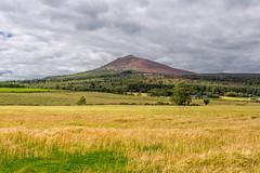 Bennachie (Alan-Jamieson) Tags: scotland aberdeenshire scotia scottishhighlands