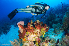 Cayman 2015 (Pedro Paulo Cunha) Tags: coral female model underwater scuba diver cayman reef wetsuit