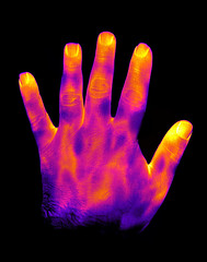 Hi-res thermal hand (Ultrapurple) Tags: hot cold scale grey weird cool warm experimental invisible warmth experiment science heat infrared 8bit temperature thermal android nightvision lowres scientific falsecolor falsecolour imager thermalimage weirdscience thermalcamera thermogram thermograph thermographic thermalimager lwir uncooled thermapp microbolometer