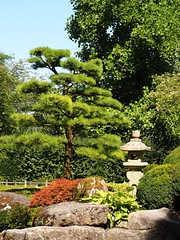 Botanical garden, Augsburg (M_Strasser) Tags: germany deutschland olympus botanicalgarden augsburg botanischergarten olympusomdem1