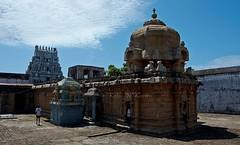 Tirundudevankudi-Tiruarumarundudevar temple (Karkatakesvarar)-Kumbakonam Explore #432