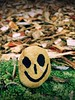 Day 251 of 365 - Green Mossy Smile! (sluggoman) Tags: smile day251 365days smileproject 365daysproject smilestone httpbitlysmile2015