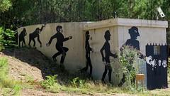 l'évolution des espèces 1 (YOUGUIE) Tags: streetart graffiti graff animaux singe fresque cévennes zooproject évolutiondesespèces bilalberreni