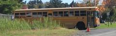 Brewster CSD #219 (ThoseGuys119) Tags: schoolbus icce icre brewsterny icfe bluebirdallamerican leonardbussales brewstercsd