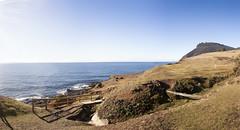 Fossil Cliffs, Maria Island