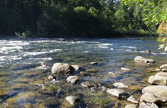Clackamas River, Oregon (lotos_leo) Tags: summer water stone oregon river landscape stream outdoor nationalforest riverbed campground terra armstrong mounthood waterscape clackamasriver  crossamerica   crossamerica2015 road224    armstrongcampground