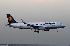 D-AIZZ - Airbus A320-214 [5831] - Lufthansa - Heathrow Airport - 31 October 2015 (Leezpics) Tags: london airport october heathrow aircraft commercial airbus 31 lufthansa lhr heathrowairport airliners a320 2015 londonheathrow egll daizz commercialaircraft 31october2015